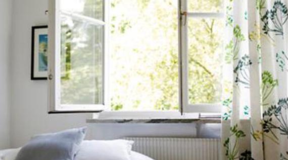 Schimmel In Huis : Last van schimmel in huis? ontdek hoe u schimmel verwijdert